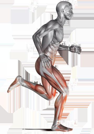 Body Pulse Next Multiple Advantages